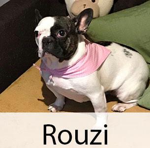 Rouzi
