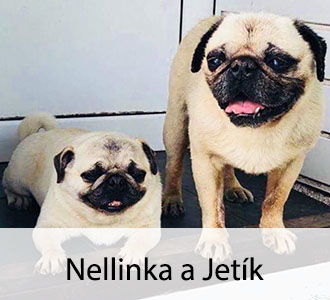 Jetík